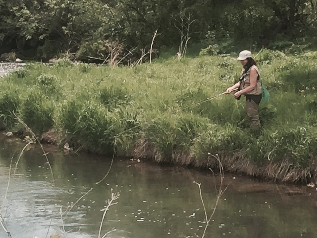 Casting from the bank